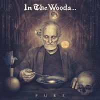 IN THE WOODS ... (Nor) - Pure, 2LP